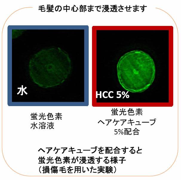 hcc_3