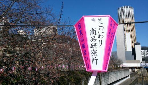 26日の目黒川の桜