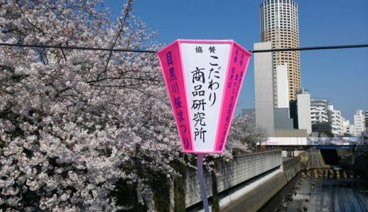 ボンボリの後ろの桜(目黒川)満開になりました!