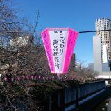 目黒川の桜まつりのボンボリに協賛しました