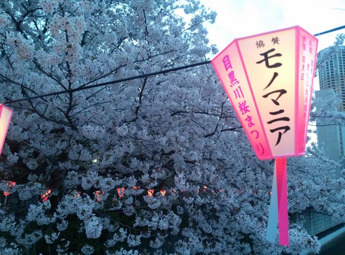 hanami_2015_27
