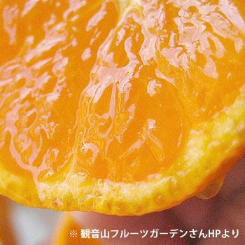torokoku1