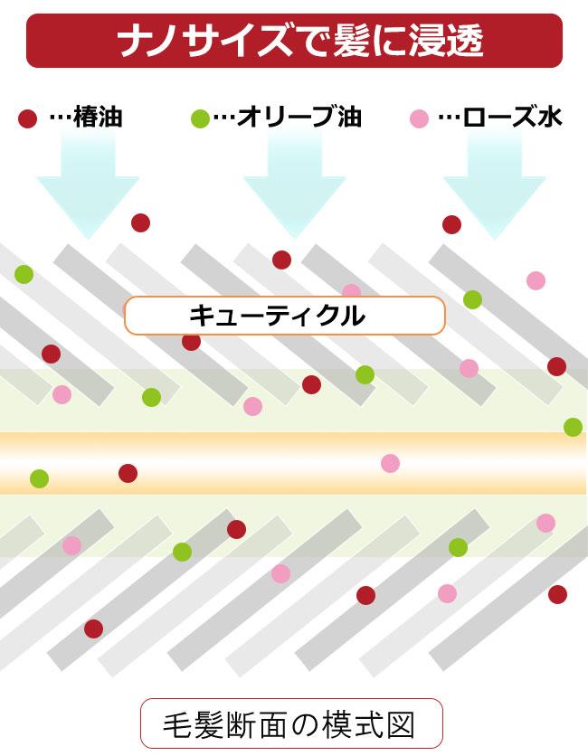 nanosara_12