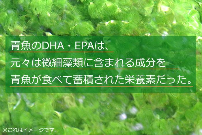 omega_08