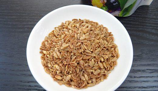 スーパー大麦ダイエット: 今までのまとめ